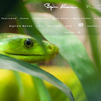 Website erstellen Borken